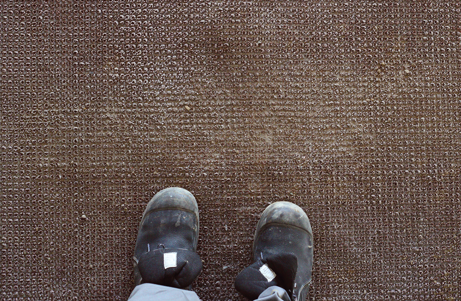 WINTER CARPET CLEANING SERVICES FOR NJ AND PA