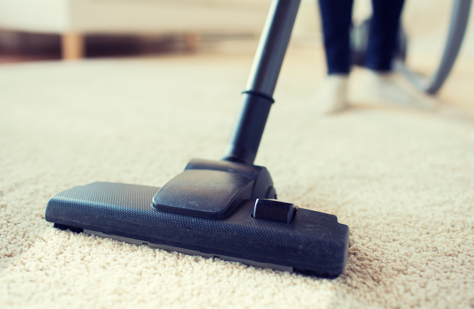 The Value of Setting up a Commercial Carpet Maintenance Program
