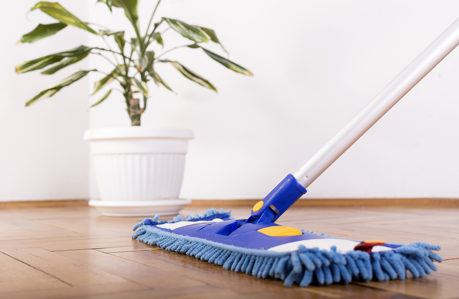 TOP-RATED HOME CLEANING SERVICES FOR NJ AND PA