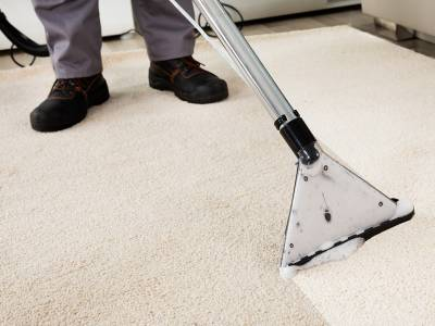 Mr Clean S Carpet Cleaning Philadelphia Carpet Vidalondon